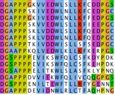 Screenshot of a protein sequencing software with colours